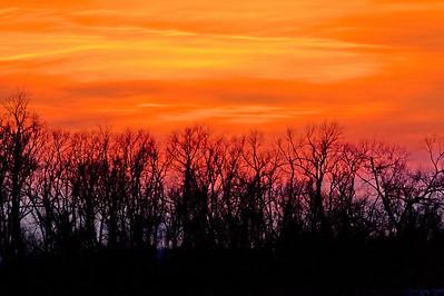 Magee Marsh Sunset