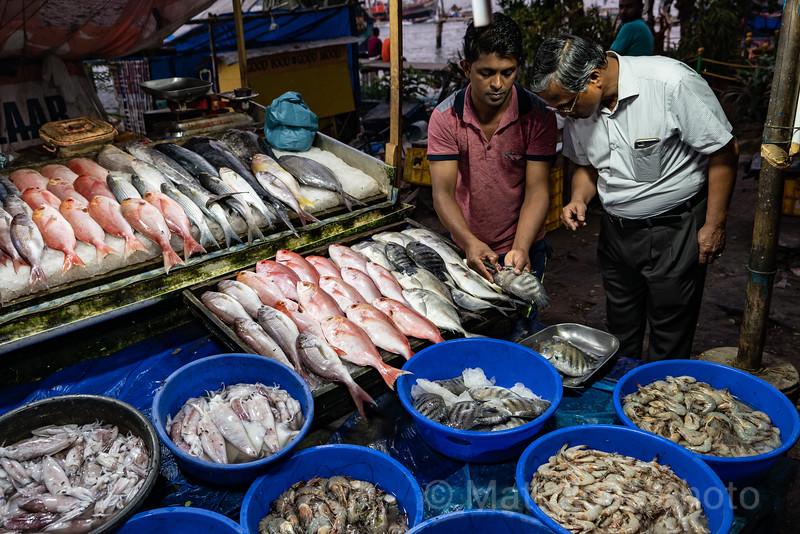 FISH SELLER, COCHI