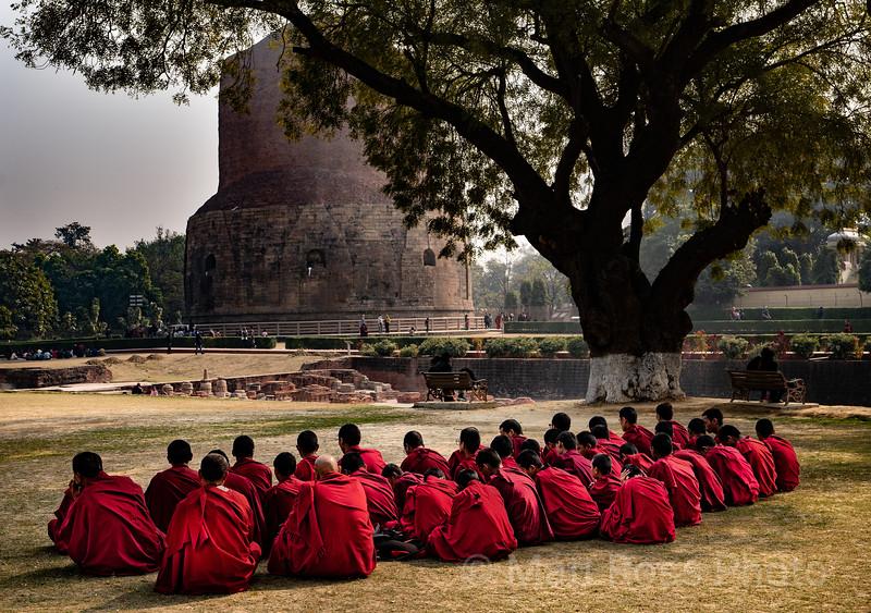 BUDDHIST MONKS, IN PILGRIMAGE TO SARNATH