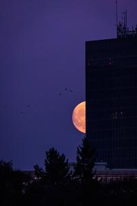 Mondaufgang Luxemburg Dezember 17 - 017