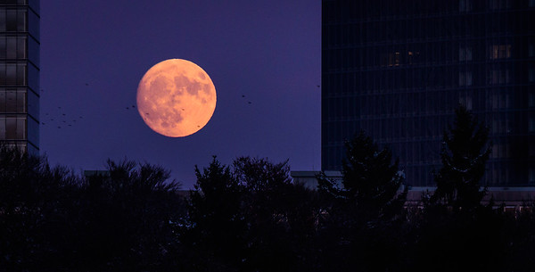 Mondaufgang Luxemburg Dezember 17 - 013