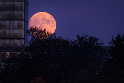 Mondaufgang Luxemburg Dezember 17 - 007