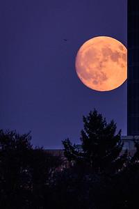 Mondaufgang Luxemburg Dezember 17 - 015