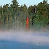 Acadia Pond