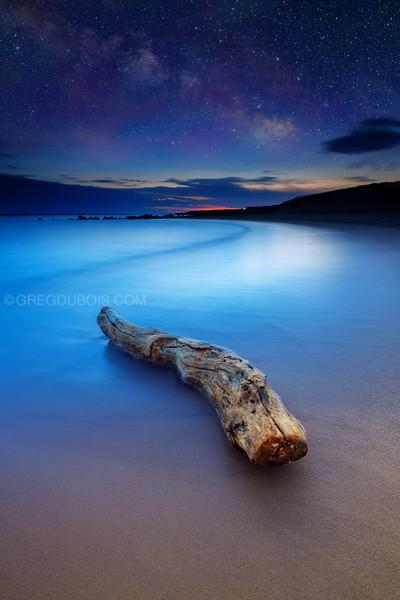 Plum Island Beach Driftwood with Milky Way in Newburyport Massachusetts
