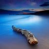 Milky Way over Driftwood at Plum Island in Newburyport Massachusetts