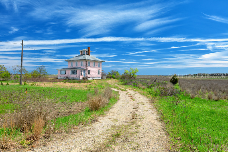 Plum Island Pink House in Spring