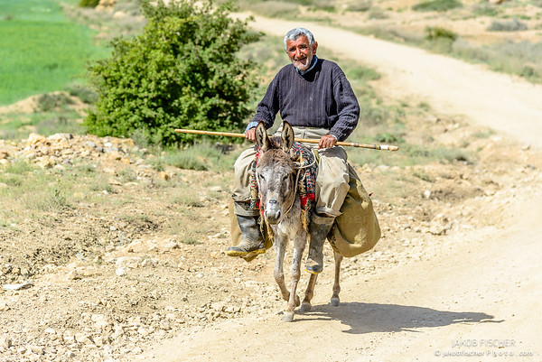 Iranian farmer with donkey