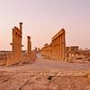 Ancient templefield of Palmyra