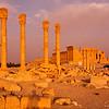 Ancient columns of Palmyra, Syria