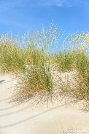 Altınkum Beach, Çeşme