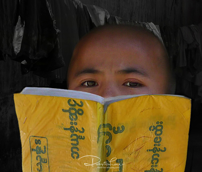A shy novice monk