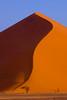 Namibia, Africa: Tree & Sand Dune at Sossusvlei