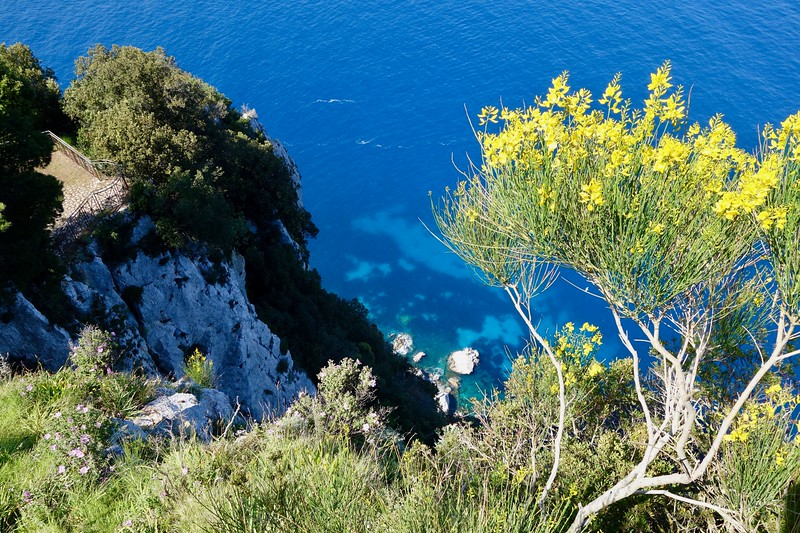 cliff views in Capri