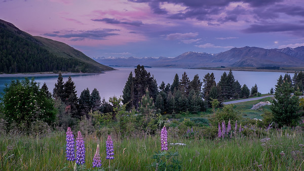 Purple skies over Lake Tekapo