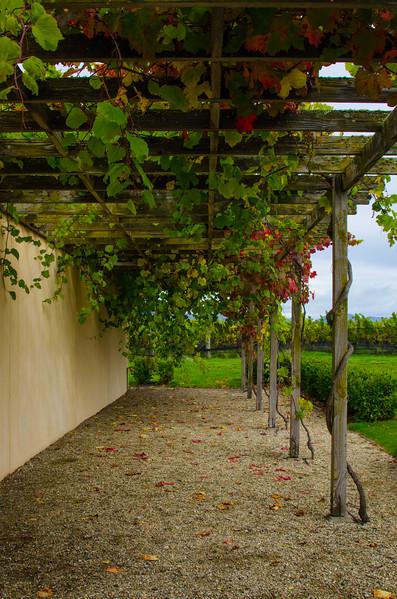 Fromm Winery, Blenheim, New Zealand
