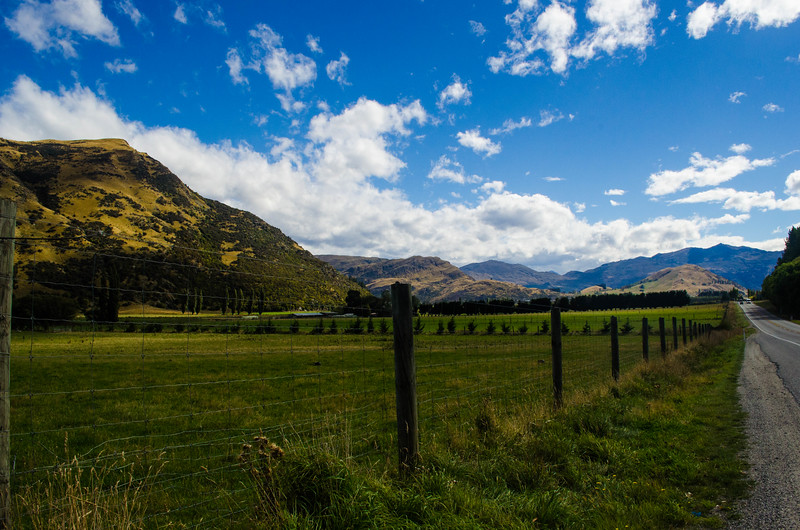 Driving Along the West Coast of New Zealand's South Island