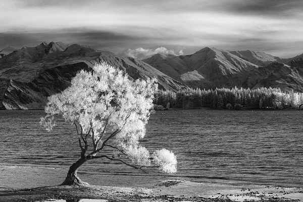 Lake Wanaka Infrared