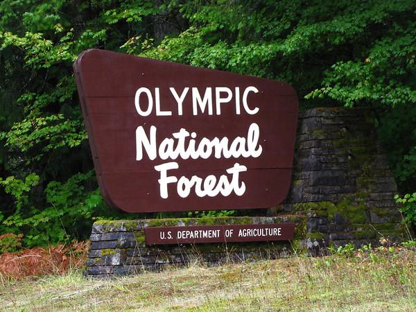 Sol Duc Rainforest, Olympic National Park, Washington (1)