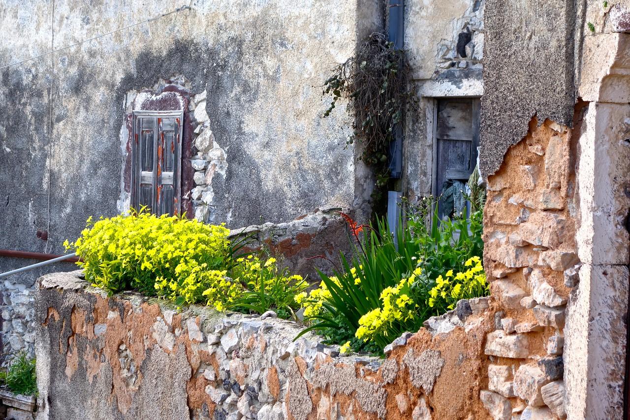 in a village near Pyrgos, Santorini