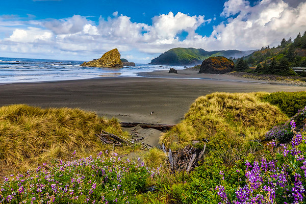 USA; Oregon; Cape Sebastian