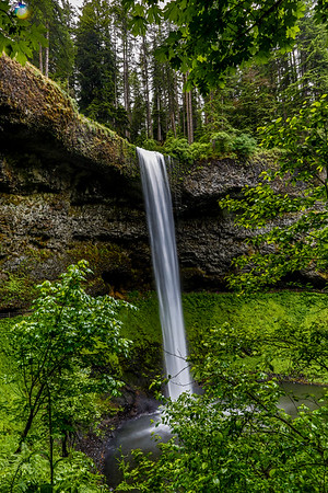 USA; Oregon; Silver Falls State Park; South Falls