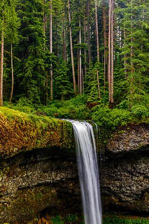 USA; Oregon; Silver Falls State Park; South Falls