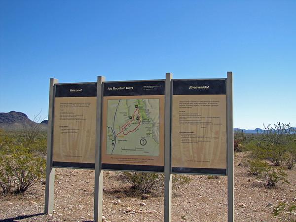 Organ Pipe Cactus National Monument, Arizona (3)