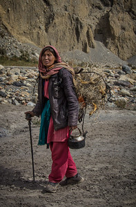 Shimshal Femaler Herder Returning From High Pasture