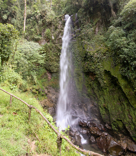 First waterfall in the cloud forest hike