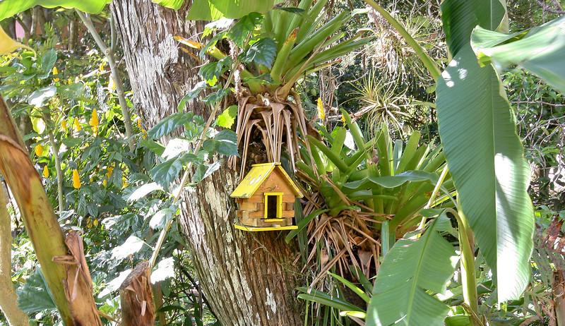 Garden Inn Grounds Birdhouse