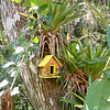 Garden Inn Grounds Birdhouse