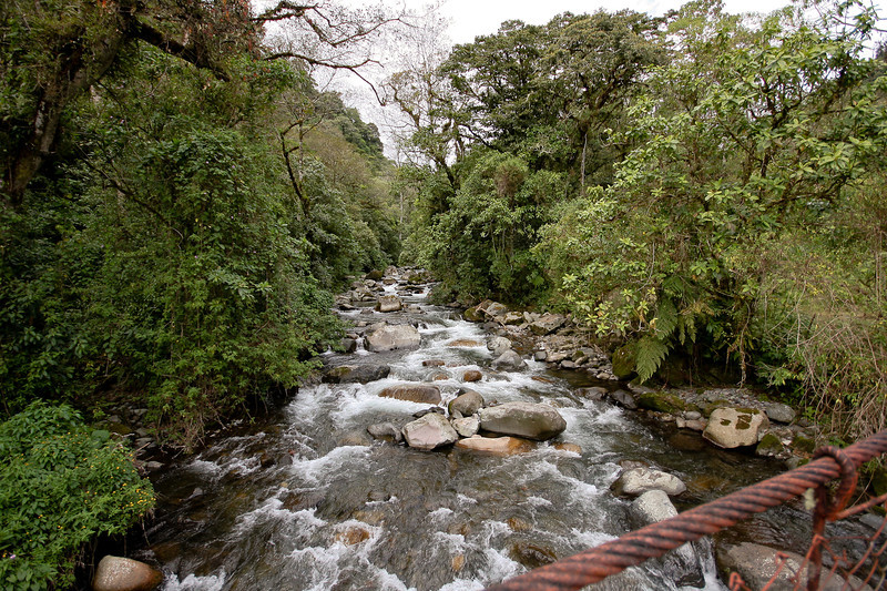 Caldera River, at the start of the cloud forest hike
