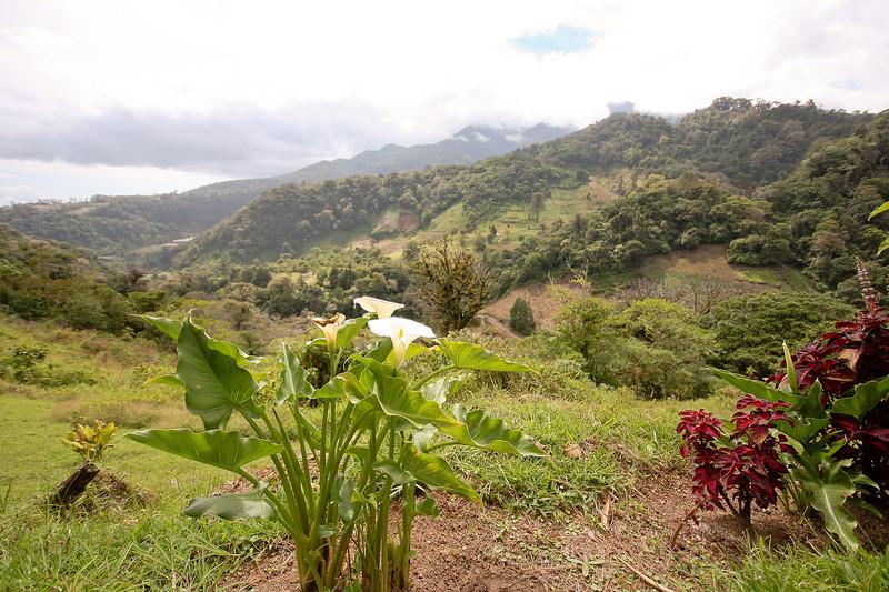 Boquete farm land