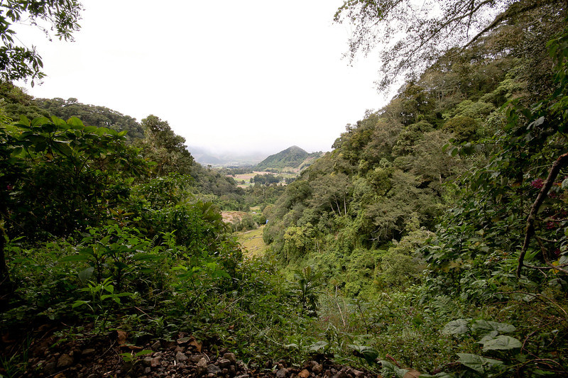 From the start of our hike through the Volcan Baru park, looking down into Chiquiri farmland