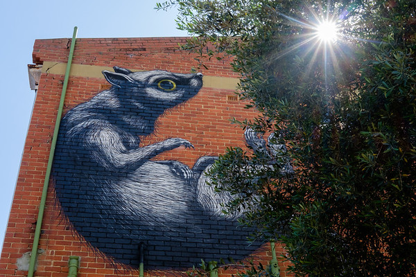 Graffitti in the sun