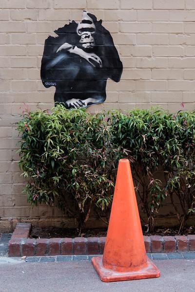 Monkey graffiti