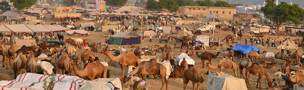 Small section of the fair. Photo Credit: Mata Tour of India