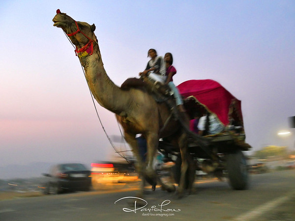 Cheap transportation