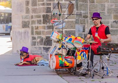 Like Drummer, Like Dog.