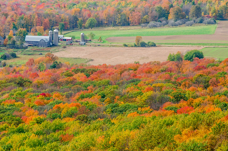 Rib Mountain Color View