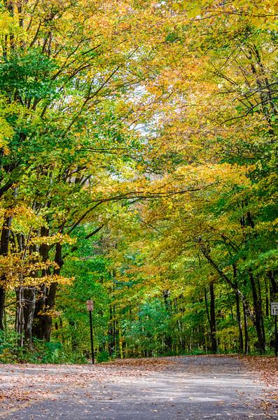 Rib Mountain Fall Drive