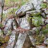 Rib Mountain Rock Pile