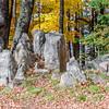 Rib Mountain Rock Garden