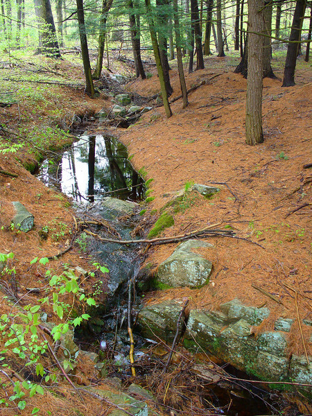 While checking out the various waterfalls around the area, there was this neat little stream.