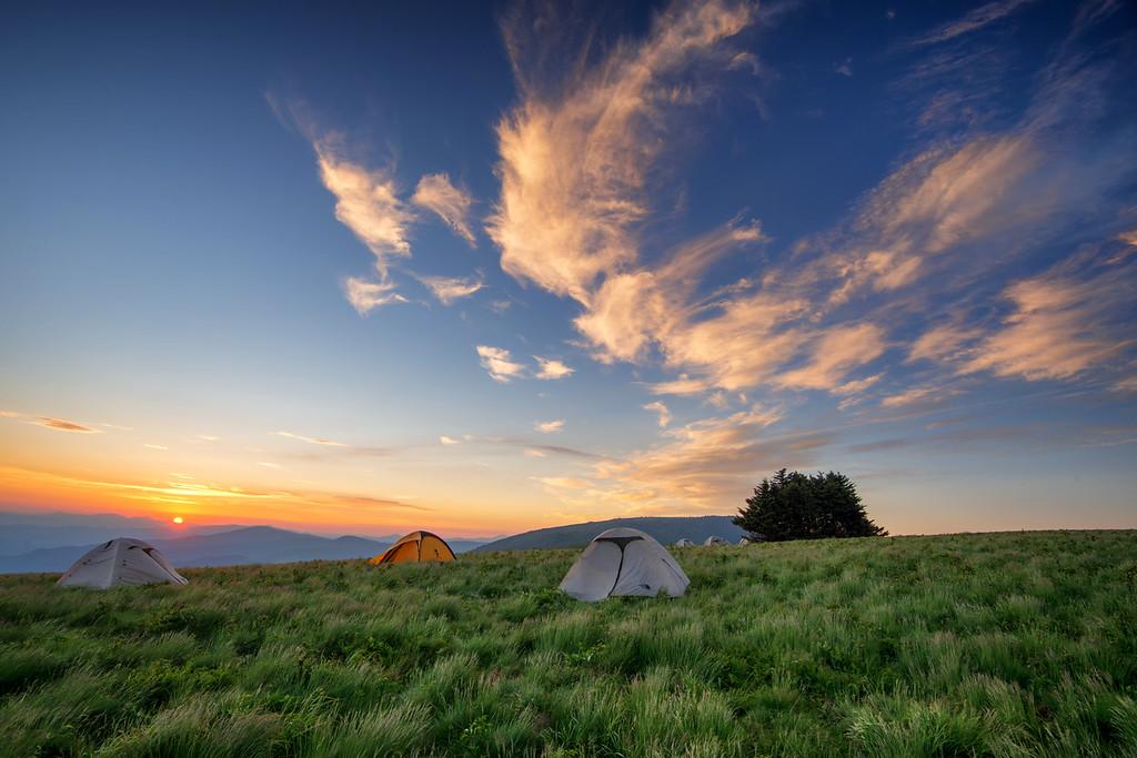https://themaryphotographer.smugmug.com/Galleries/Travel/Roan-Mountain/i-XRfJpx3/buy