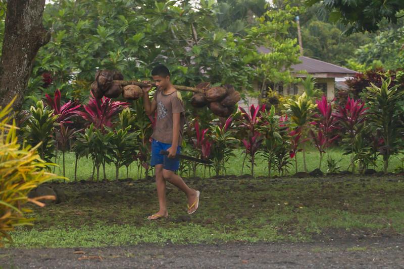 Boy with coconuts