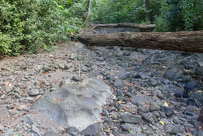Dry stream with sharpening stone
