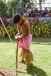 Cracking of coconut fruit
