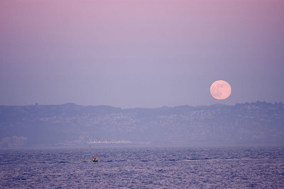 Moon rises on the Bay